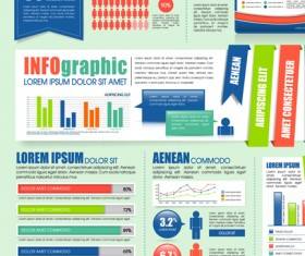 Business Infographic and diagram vector graphics 03