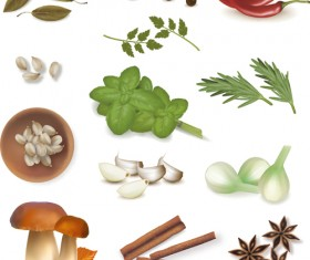 Set of Different Spice design vector 01