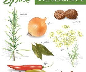 Set of Different Spice design vector 03