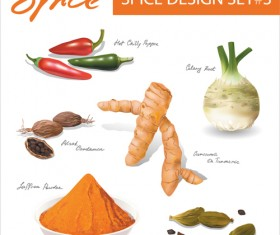 Set of Different Spice design vector 04