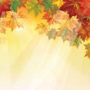 Link toPretty autumn backgrounds art vector 03