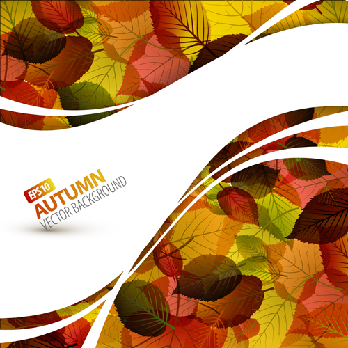 Pretty Autumn Backgrounds Art Vector 04 Free Download