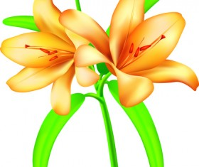 Vector Background with flowers design elements 05
