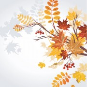 Link toSet of leaf fall vector backgrounds vector 04