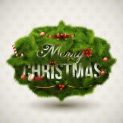 Link toGreen pine needles christmas cards backgrounds vector 02