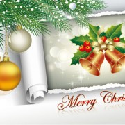Link toCreative 2013 christmas decor art vector 02