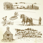 Link toHand drawing farm design elements vector 02