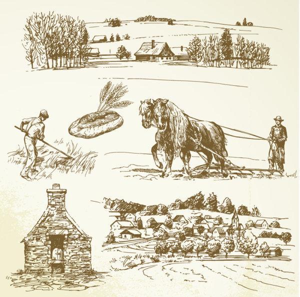 Как нарисовать сельское хозяйство