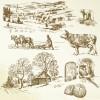 Hand drawing farm design elements vector 03
