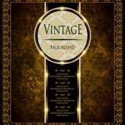 Link toOrnate vintage golden frame backgrounds vector 03