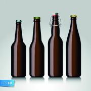 Link toDifferent beer bottle design elements vector 04