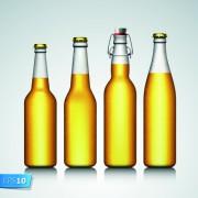 Link toDifferent beer bottle design elements vector 05