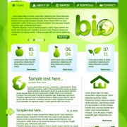 Link toGreen eco website template design vector 02