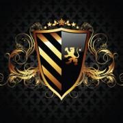 Link toLuxurious of heraldic shield design vector 05