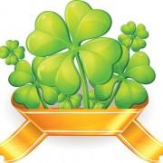 Link toElements of clover symbol vector 03