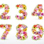 Link toElements of colorful flower numbers and alphabet vector 01