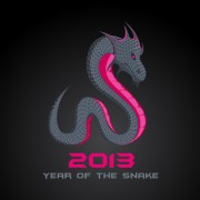 Link toDifferent snake 2013 design elements vector collection 05