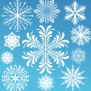 Link toDifferent snowflake elements vector graphics 02