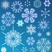 Link toDifferent snowflake elements vector graphics 03