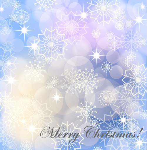 Christmas Snowflakes patterns design vector 01
