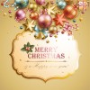 Different Xmas decorations vector material 03