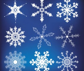 Different Snowflake pattern mix vector graphics 03