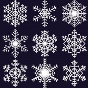 Link toDifferent snowflake pattern mix vector graphics 04