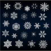 Link toSet of snowflake backgrounds for christmas vector 02