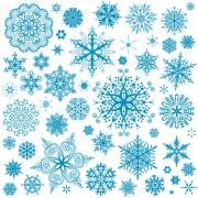 Link toDifferent snowflake patterns design elements vector 03