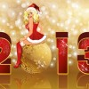 Set of  2013 Red-golden Christmas cards design vector 02