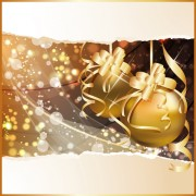 Link toExquisite christmas elements collection vector 05
