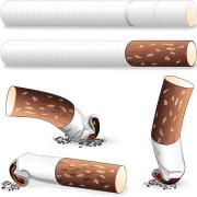 Link toDifferent cigarettes elements vector set 03