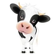 Link toSet of amusing animals elements vector 02
