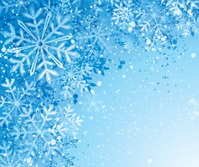 Winter Snowflake backgrounds art design vector 05