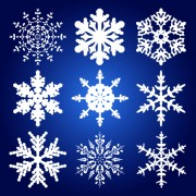 Link toDifferent snowflakes mix design vector material 01
