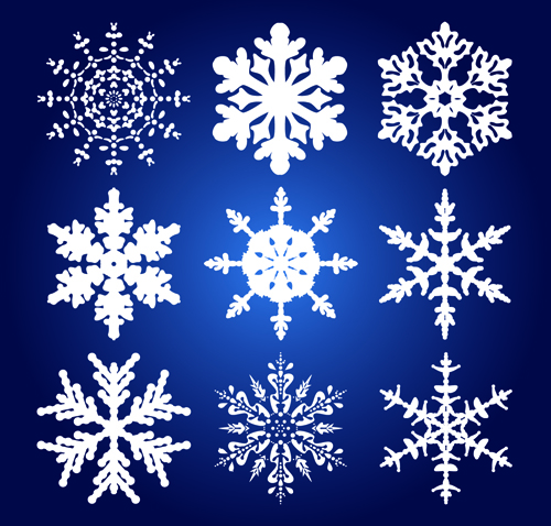 different snowflakes mix design vector material 01