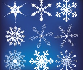 Different Snowflakes mix design vector material 03