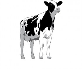 Different Dairy cow design vector graphics 04
