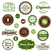 Link toGo green eco and bio labels with stickers vector 04