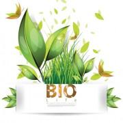 Link toSet of bio life vector backgrounds 04