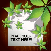 Link toBlank paper and leaf background vector