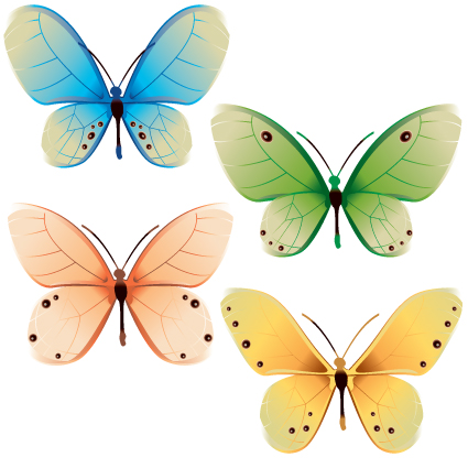 Beautiful Butterflies design elements vector 02