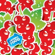Link toOrganic food labels stickers design vector 02