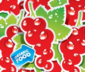 organic food labels Stickers design vector 02
