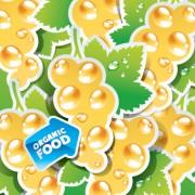 Link toOrganic food labels stickers design vector 04