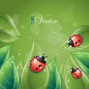 Link toVivid insects design element vector 01