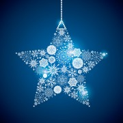 Link toShining snowflakes ornaments design vector graphics 04