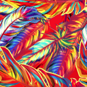 Link toColorful feather vector