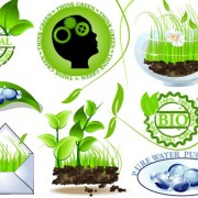 Link toSet of creative ecology labels vector graphics 02