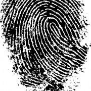 Link toDifferent fingerprints design elements vector 03